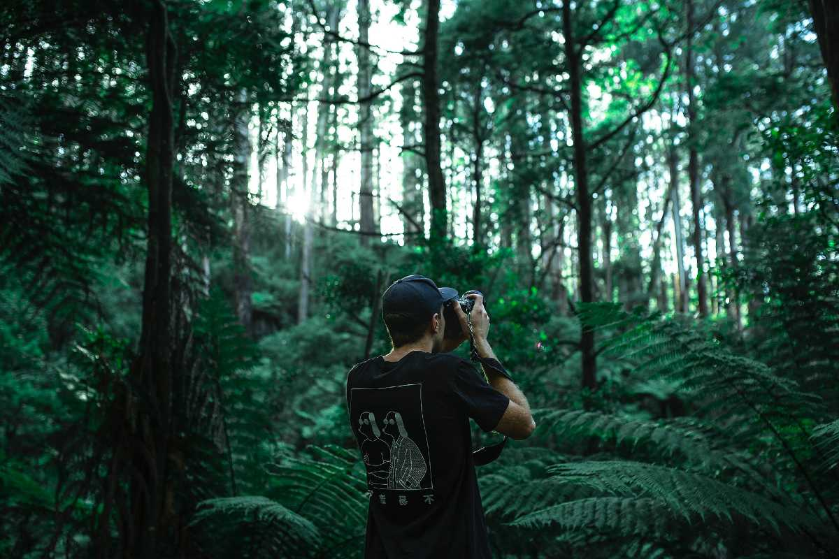Photo of person taking a photo in lush forest by Ben Blennerhassett on Unsplash